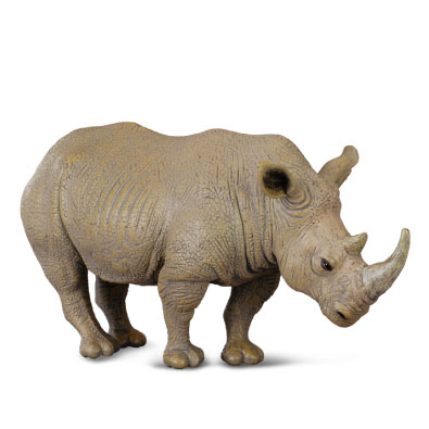 White Rhinoceros - 88031