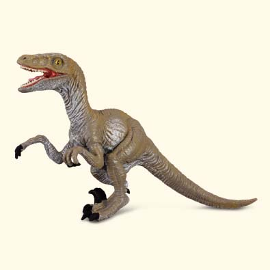Velociraptor - age-of-dinosaurs-popular-sizes