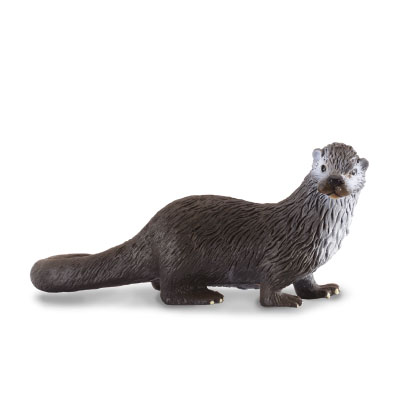 Common Otter - 88053