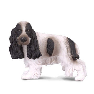 English Cocker Spaniel - 88070