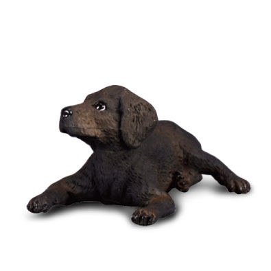 Cachorro de Labrador Retriever - 88077