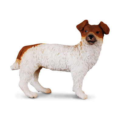 Jack Russell Terrier - 88080