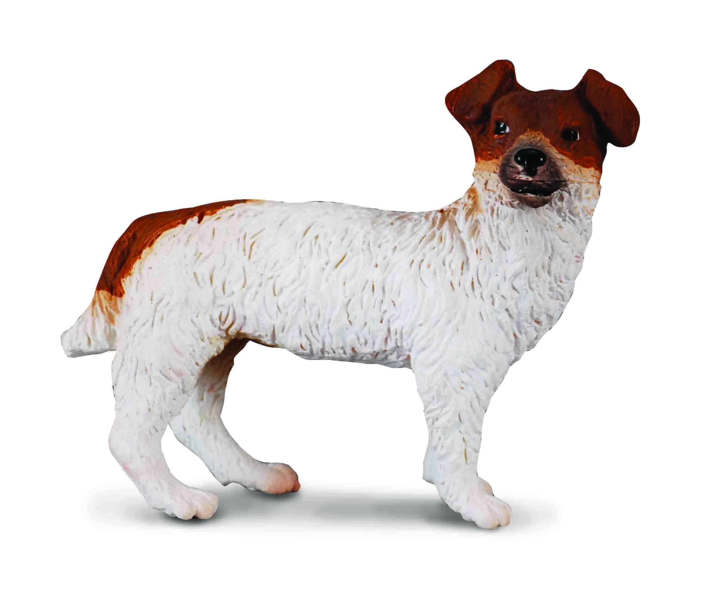 Spielzeug - Jack Russell Terrier Welpen, Züchter und