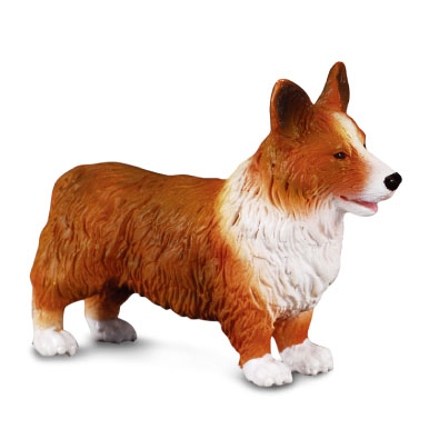 Welsh Corgi - 88082