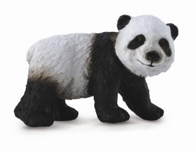 小熊猫 - 站