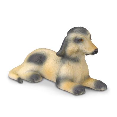 Cachorro de Afgano