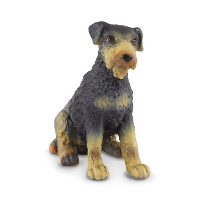 Airedale Terrier Puppy - 88176