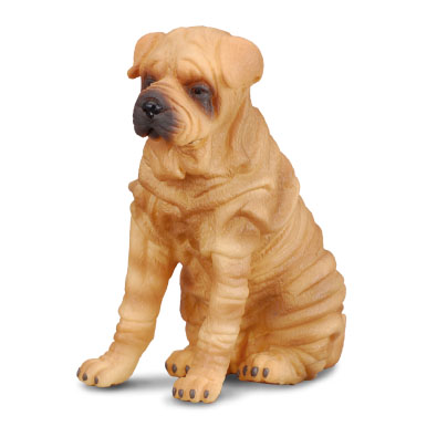 Shar Pei - cats-and-dogs