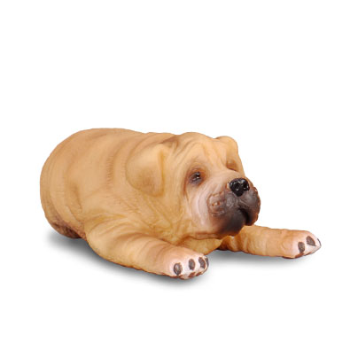Shar Pei Puppy - cats-and-dogs