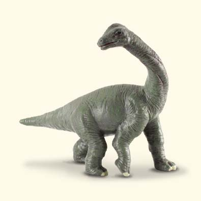 Brachiosaurus Baby - age-of-dinosaurs-popular-sizes