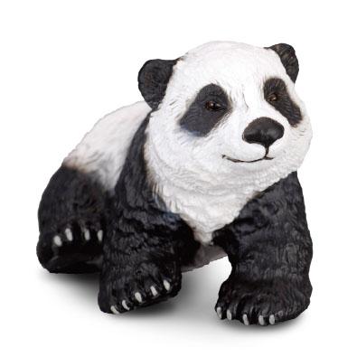 Giant Panda Cub - Sitting
