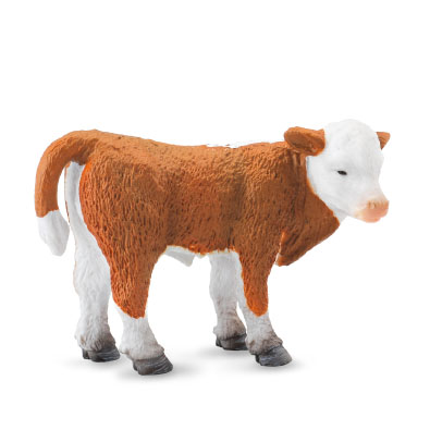 Hereford Calf (Standing) - 88236