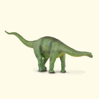 Cetiosaurus - age-of-dinosaurs-popular-sizes
