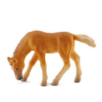 Haflinger Foal - Grazing