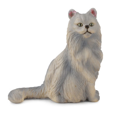 Persian Cat - Sitting  - 88329