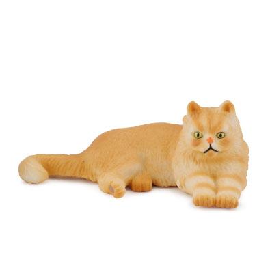 Persian Cat - Lying