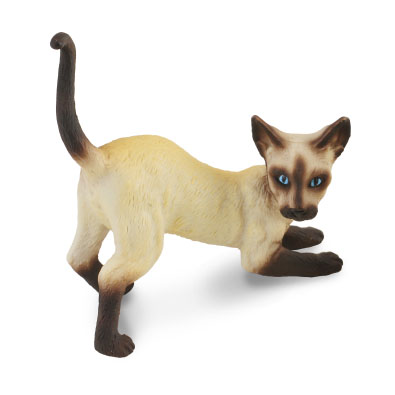 Siamese Cat - Stretching - 88332
