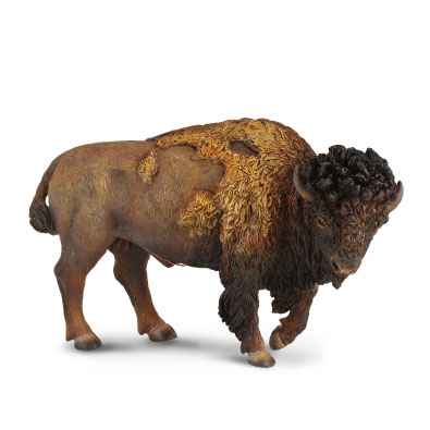 American Bison - 88336