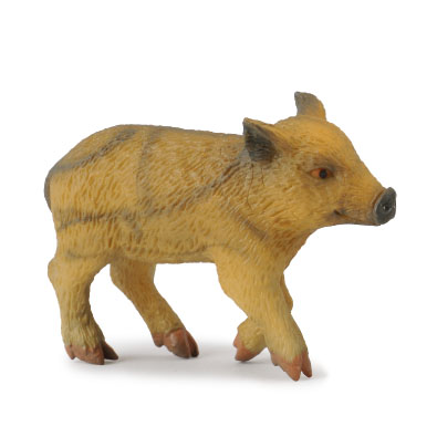 小野猪 - 走路