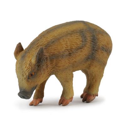 Wild Piglet - Eating