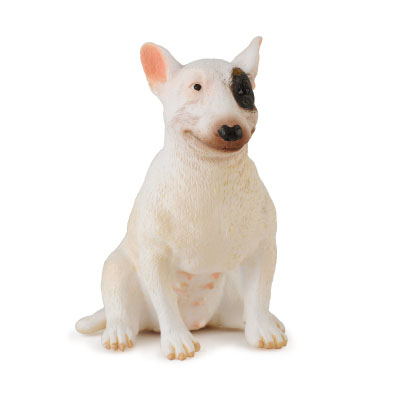 Bull Terrier - Female - 88385