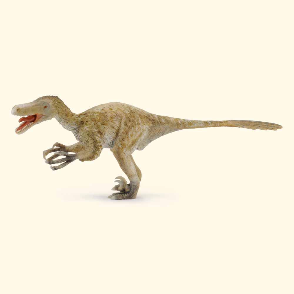 Velociraptor Quick Facts Velociraptor - Deluxe ...