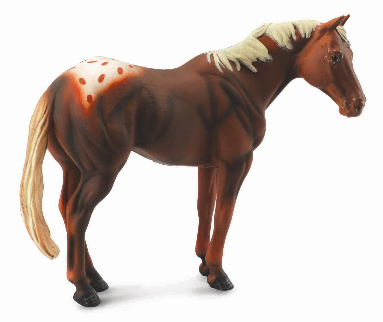Chestnut Appaloosa Stallion - Collecta Figures: Animal ... - photo#11