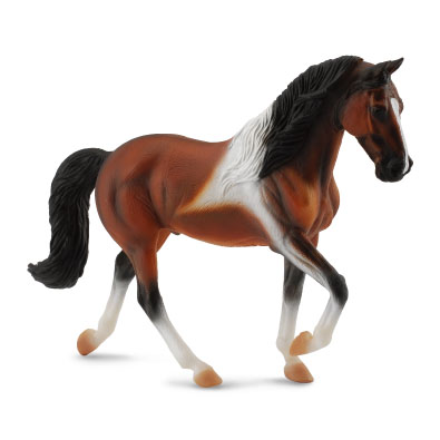 Tennessee Walking Horse Stallion Bay Pinto - 88450