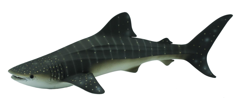 Shark Toys For Boys And Dinosaurs : Whale shark collecta figures animal toys dinosaurs