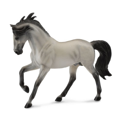 Andalusian Stallion Grey  - 88464
