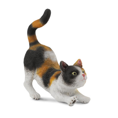3-Colour House Cat - Stretching - 88491