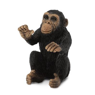 Cachorro de Chimpancé - Abrazando