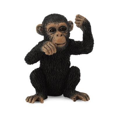 Chimpanzee Cub - Thinking