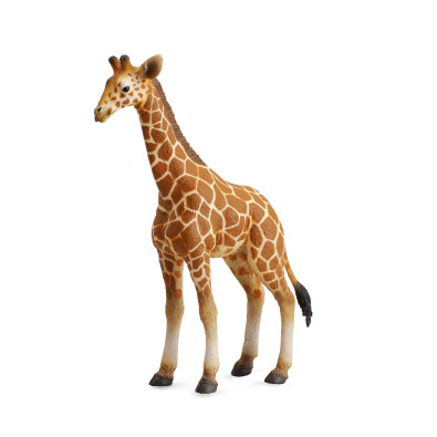 Reticulated Giraffe Calf - 88535