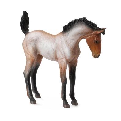 Mustang Foal – Bay Roan