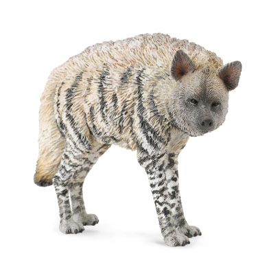 Striped Hyena - 88566