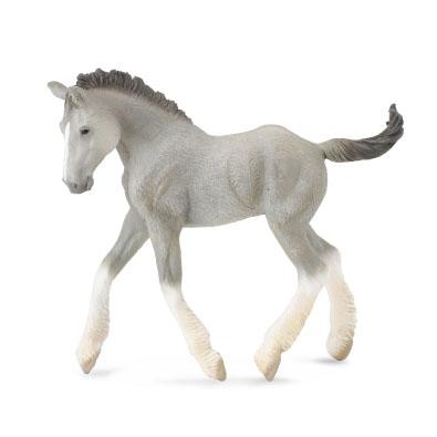 Shire Horse foal - Grey