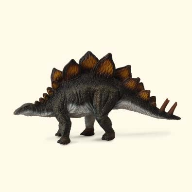 Stegosaurus - age-of-dinosaurs-popular-sizes
