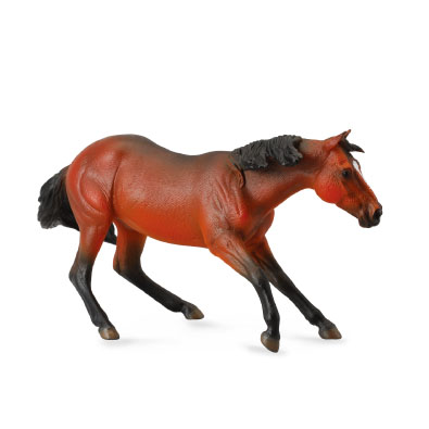Quarter Horse Stallion - Bay - horses-1-20-scale