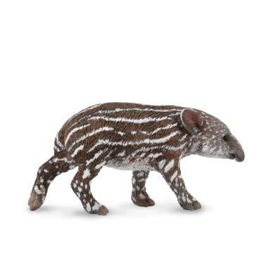 Baird's Tapir Calf