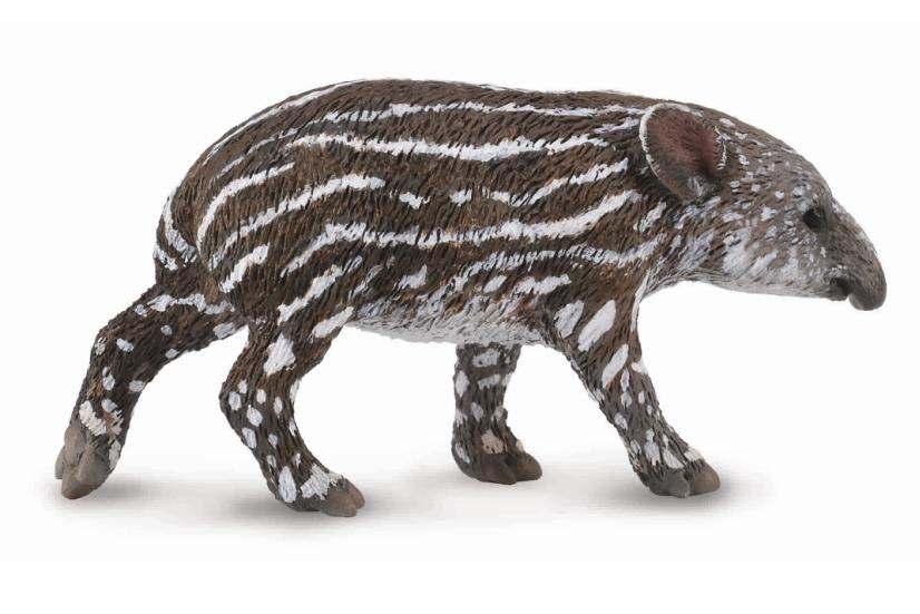 Baird's Tapir Calf - Collecta Figures: Animal Toys