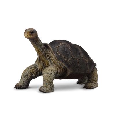 平塔岛象龟 (孤独乔治)
