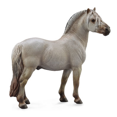 Fjord Stallion Grey  - 88632