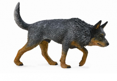 Australian Cattle Dog - cats-and-dogs