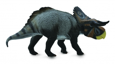 Nasutoceratops    - age-of-dinosaurs-popular-sizes