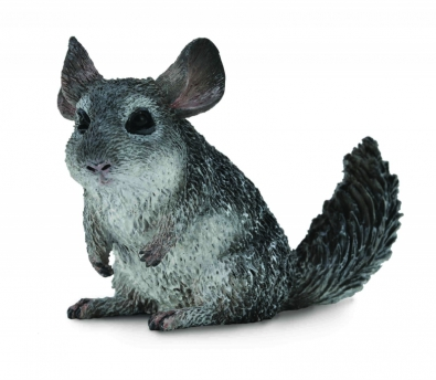 Long-Tailed Chinchilla - 88722