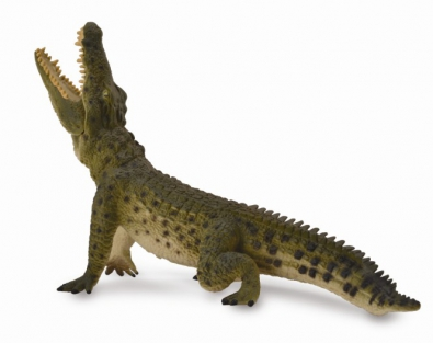 Nile Crocodile - Leaping  - 88725
