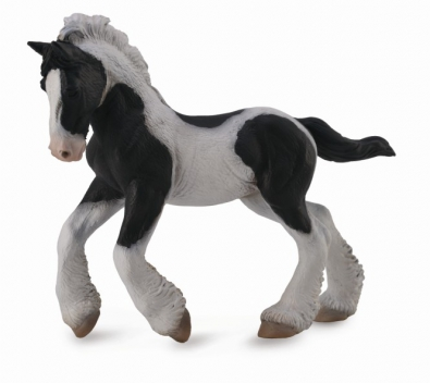 Gypsy Foal - Black & White Piebald - 88770