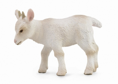 Goat Kid - Walking - 88787