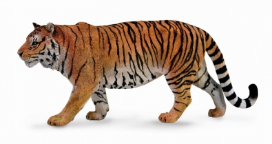 Siberian Tiger - asia-and-australasia